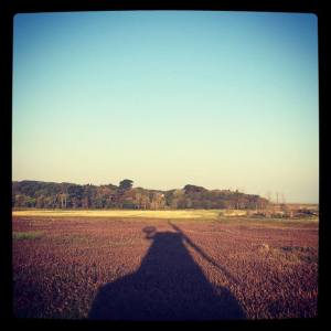 Windmill shadow