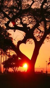 heart sunset