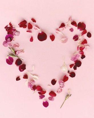 LC Heart
